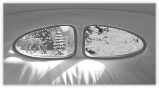 Vw_beetle_window
