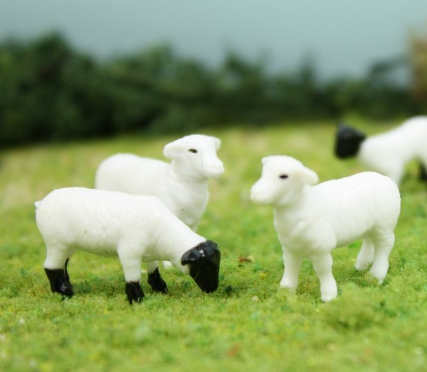 "3/4"" Sheep - Set of 6 - O SCALE - 102-2047"