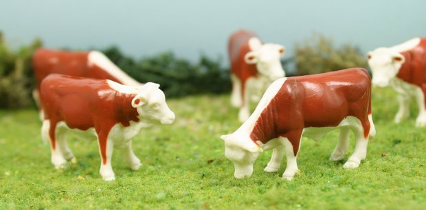 "1"" Cattle-Hereford - Set of 5 - O SCALE - 102-2032"
