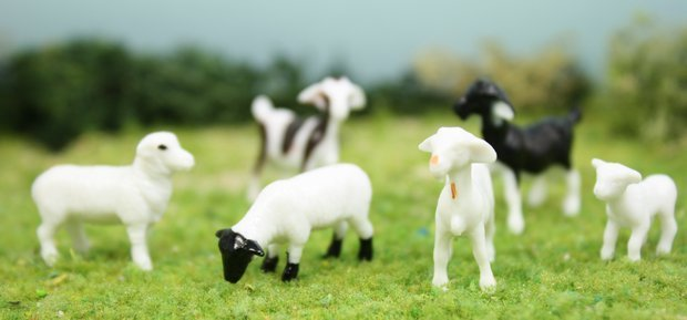 "3/4"" Goats/Sheep - Set of 6 - O SCALE - 102-2062"