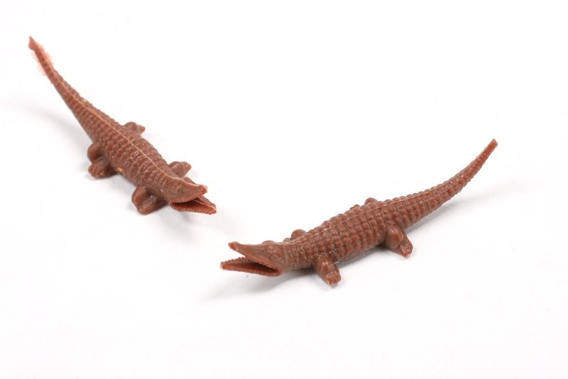 Alligators - Small - Set of 8 - Dollhouse Minis - 201-155-3