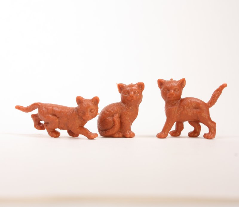 Cats - Assorted Set - Brown - Set of 8 - 201-167-3BN
