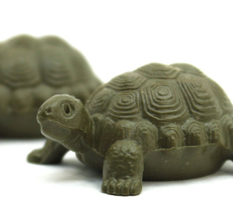 Turtles - Large - 6 pieces - German Imports - 203-9-120