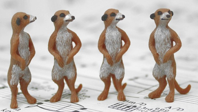 Meerkat Babies - Hand Painted -  Set of 4 - 234-3822