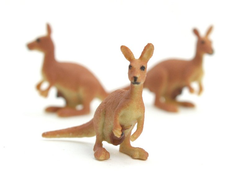 Kangaroo with Baby -  Hand Painted -  Set of 4 - 234-4022