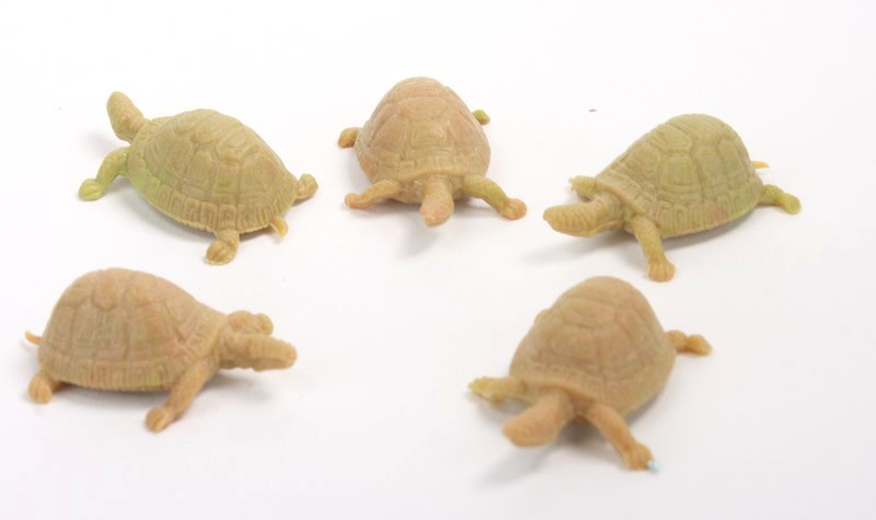 Brown Turtles - Set of 8 - Italian! - IV3-3615