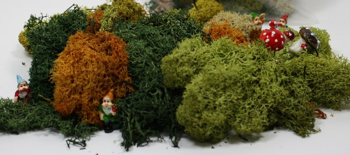 Soft Moss - Lichen - Large Bag - German Imported  - 125-3001