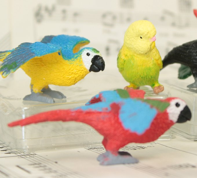 "1.5"" Exotic Bird Set -  Set of 12 - 268-0404"